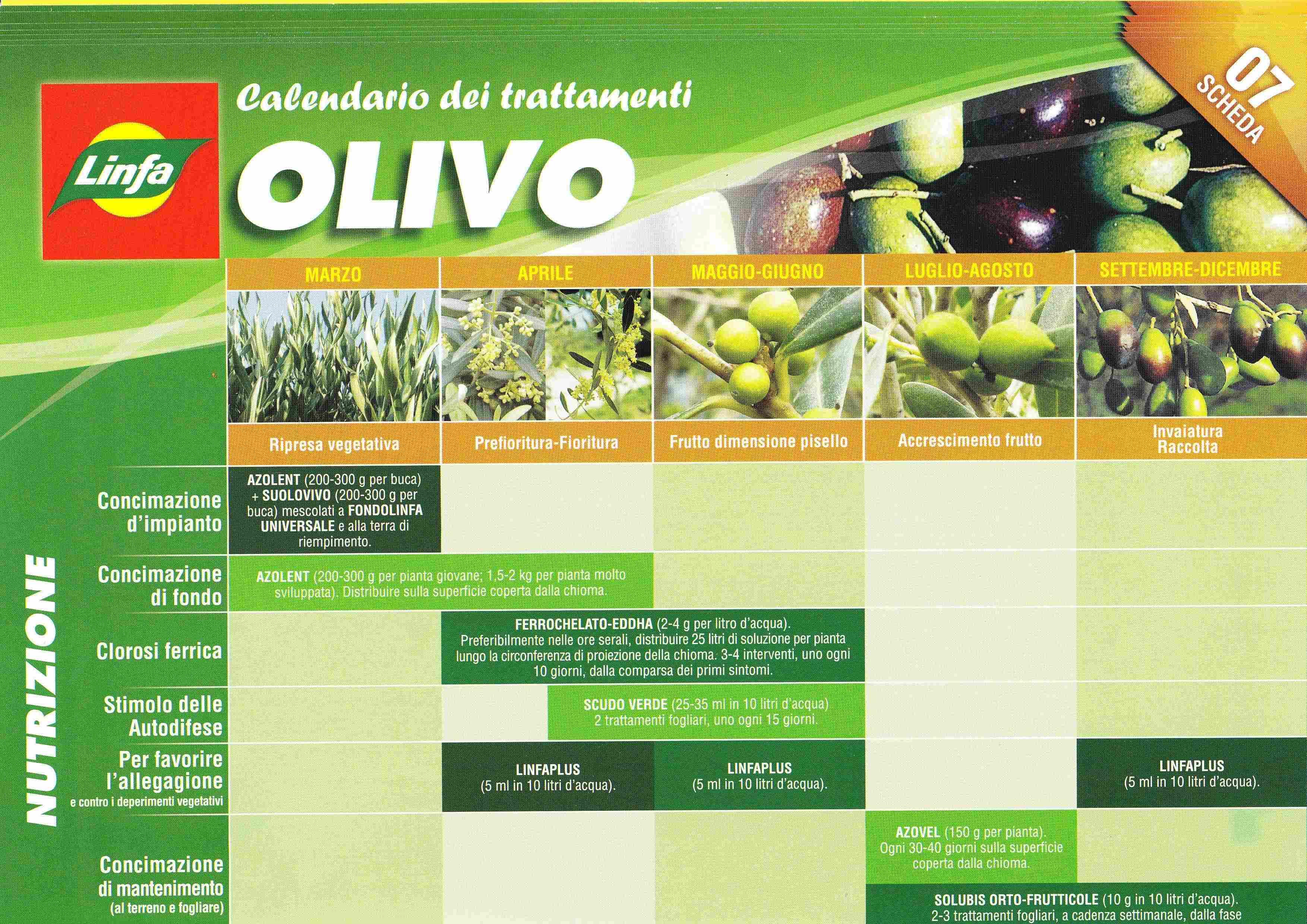 Calendario Trattamento Nocciolo.Www Ferraragiardinaggio It Calendario Interventi