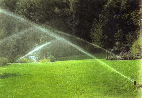 Www ferraragiardinaggio it progettazione realizzazione for Preventivo impianto irrigazione